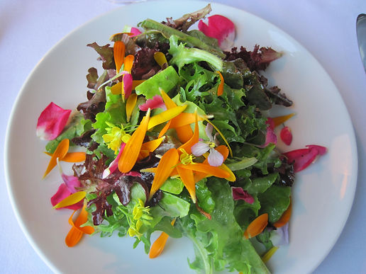 Organic seasonal salad