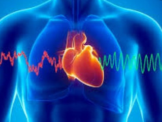 ما هي كهرباء القلب...؟؟؟ وكيف ينتجها؟