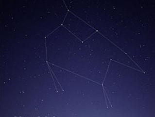 النجم القطبي كوكبة الدب الأصغر
