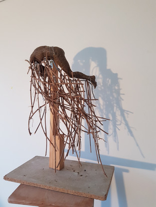 Scension floating, maquette
