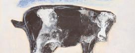 cow 2008.jpg