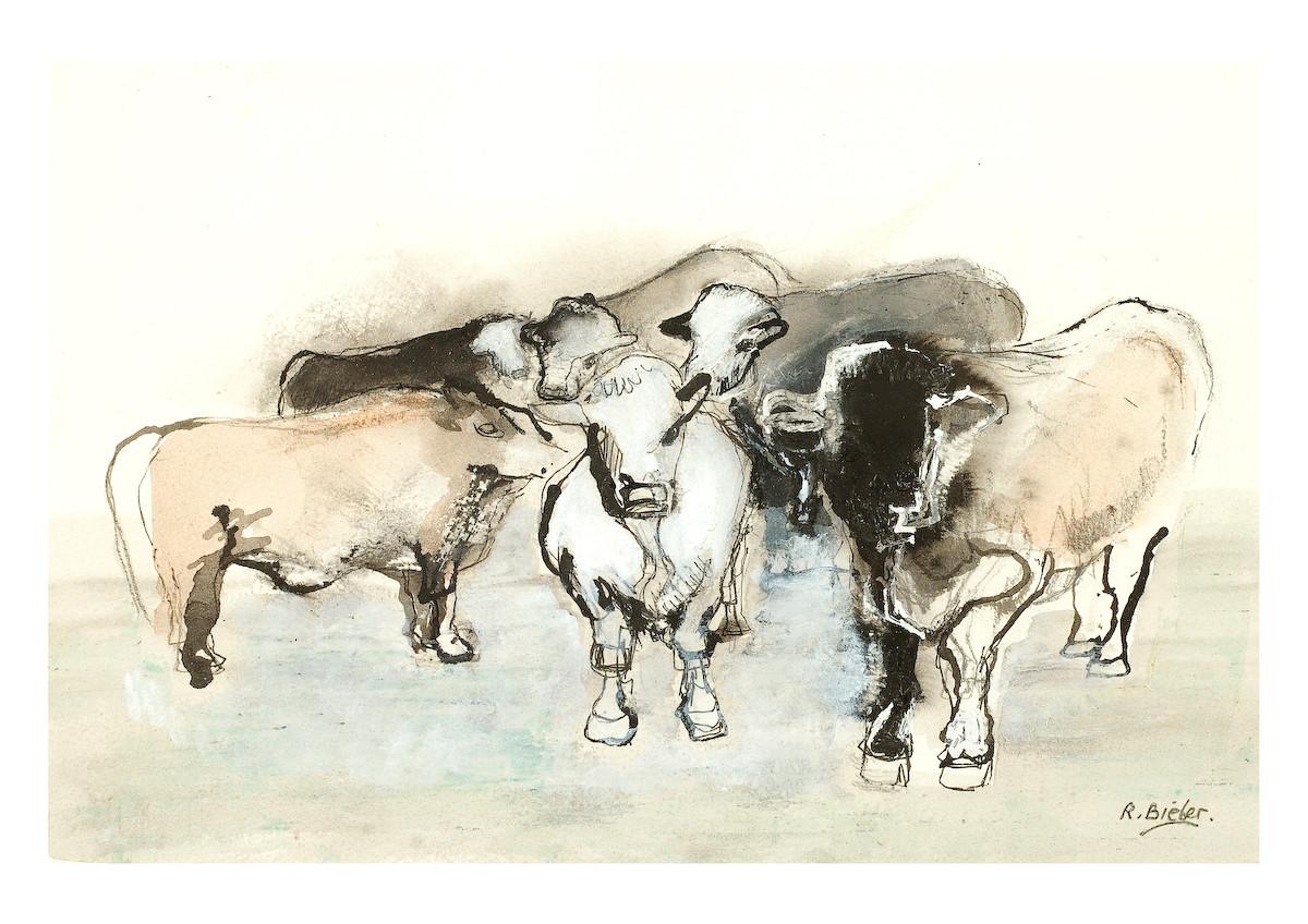 cows LCA .jpg
