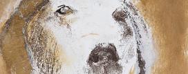 12. Charlie. Carborundum pigment. 29x25c