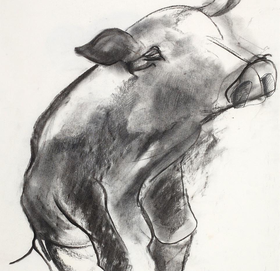 pig 1998