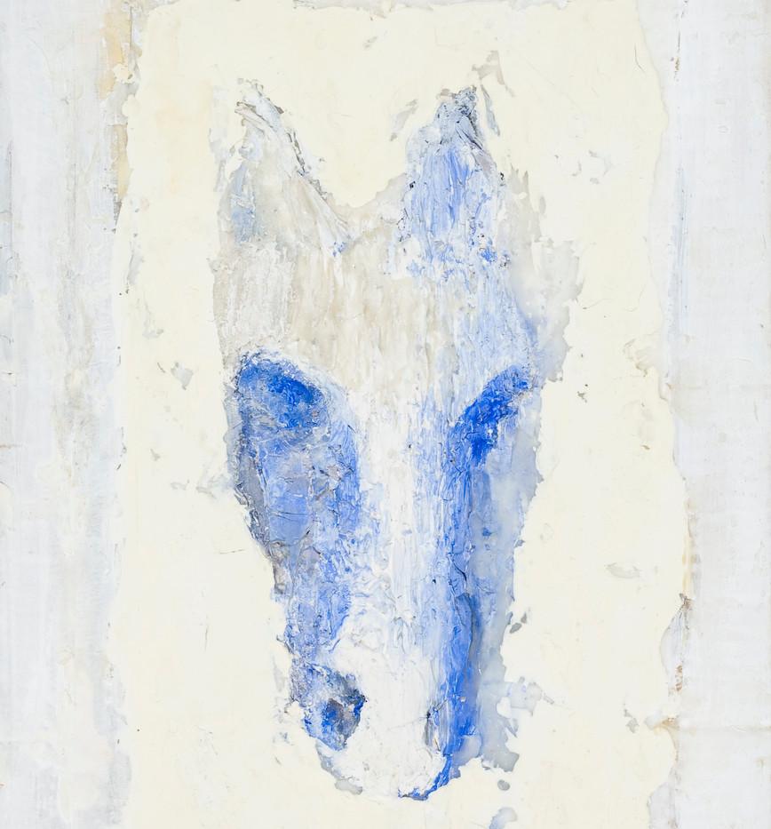 head of an ancient horse.jpg