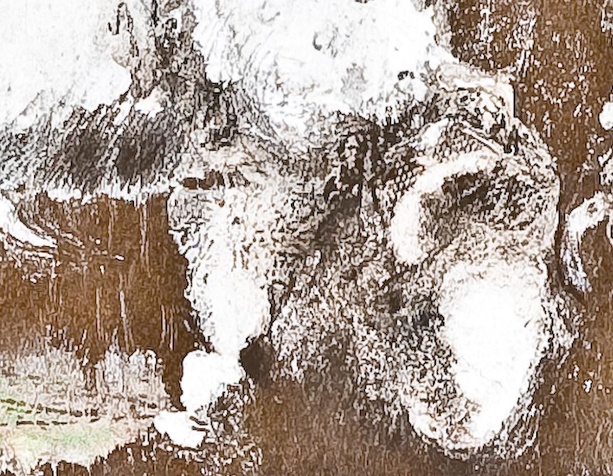 bison fighting - detail.jpg