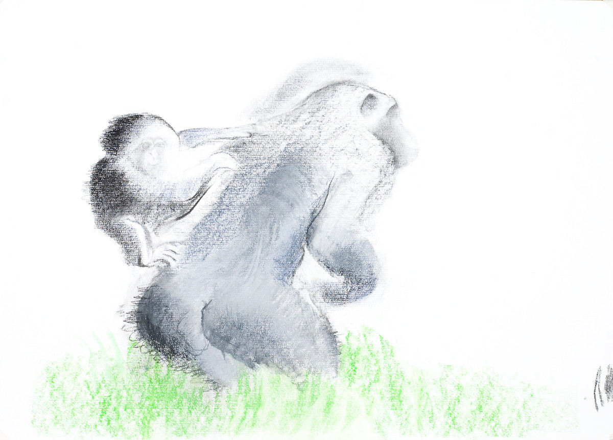 chimp mother and baby 2007.jpg