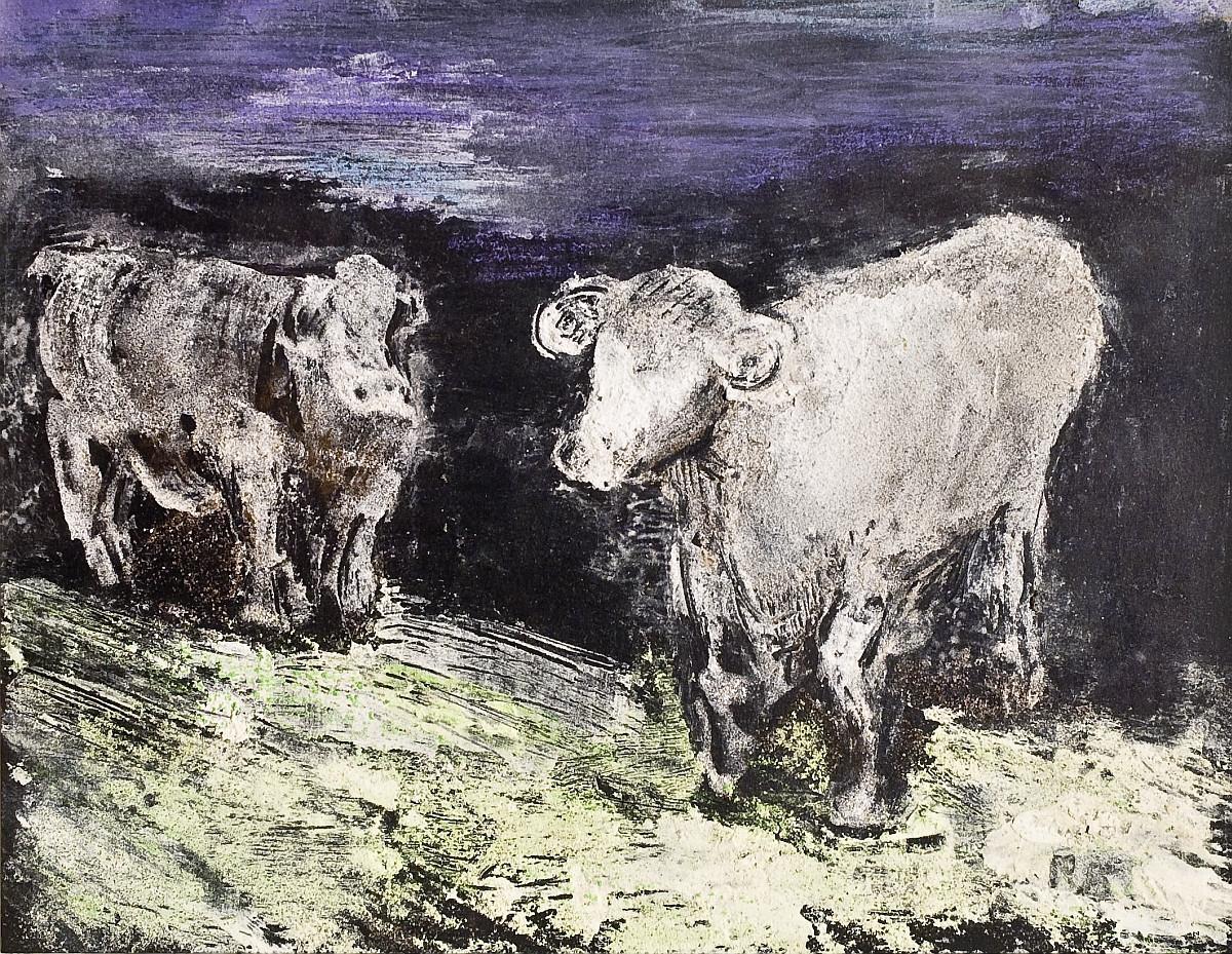 Cows on a blackbackground.jpg