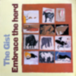 The Gist, band, Embrace The Herd, LP, Rough Trade, Stuart Moxham, Young Marble Giants, 1981, post-punk