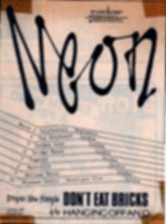 Neon, group, north east, Don't Cover Your Hair, Bottles, I'm Only Little, Tim Jones, Radar Records, Martin Hannett