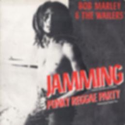 Bob Marley, Jamming, Punky Regge Party, Don Letts, Punk Rock Movie, Westway to the World, Punk: Attitude, Joe Strummer, Clash, Slits, punk, post-punk