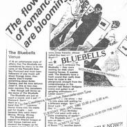 Bluebells 1982