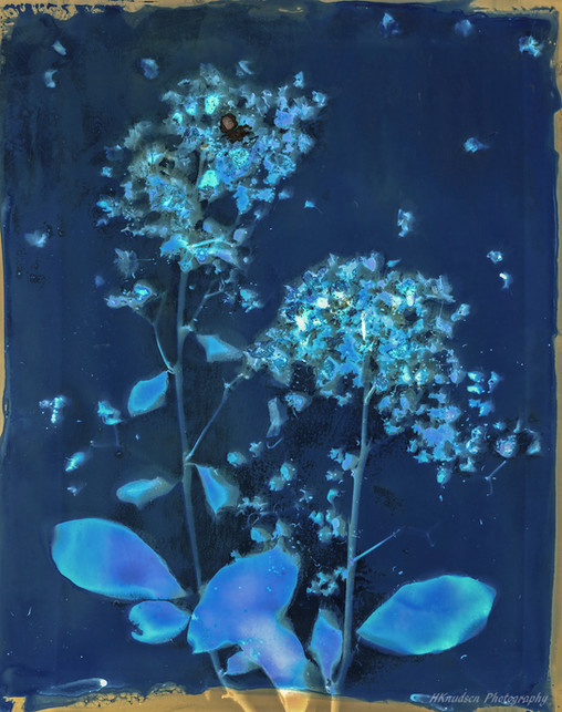 chemilumen created with cyanotype chemicals and photographic paper