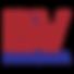 bv-financeira-logo-vector.png