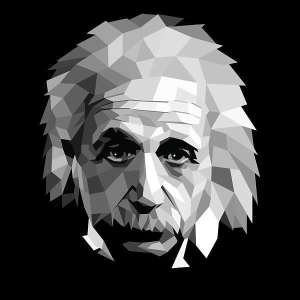 low poly Einstein.jpg