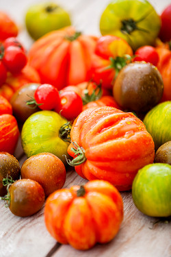 Tomatensammlung