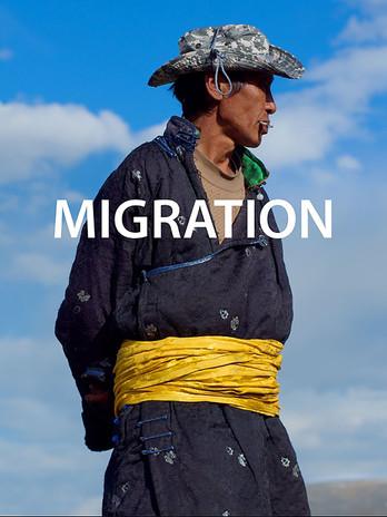 Migration Screening