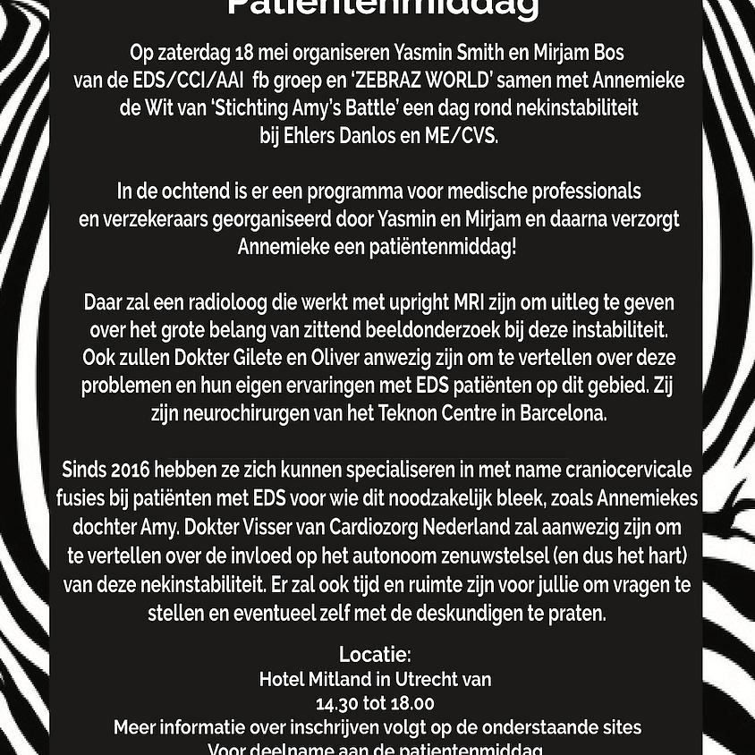 Dutch Patient Info Afternoon
