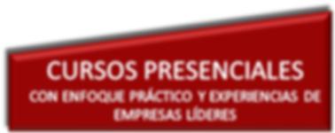PRESENCIALES.png