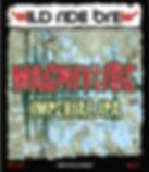 Magnitude_Untappd-01.jpg