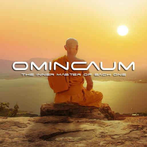 Omincaum© Seu Mestre Interior