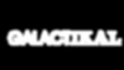 Galactic Navigators logo 2(1).png