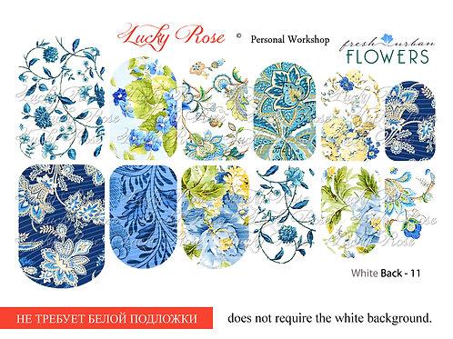 Series White Back №11