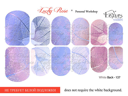 Series White Back №137