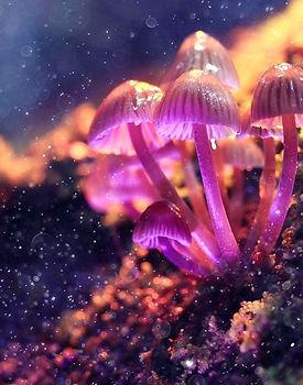 psychedelic mushroom_edited.jpg