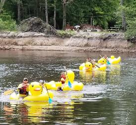rubber duck1.jpg