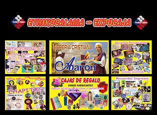afiche (1).png