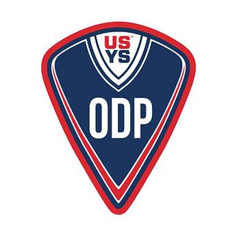 RIM-2020_ODP_Logo.png