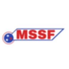 RIM-MSSF_Logo_Example.png
