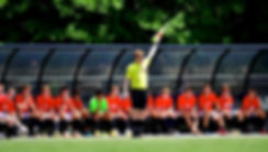 RIM-Referee12_1.jpg