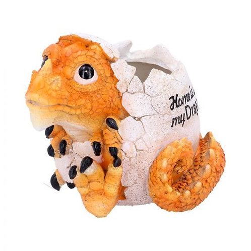 Dragons - Home Is Where my Dragon Is Pot (16cm)
