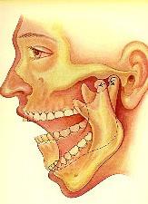 ATM, ostéopathie et posture
