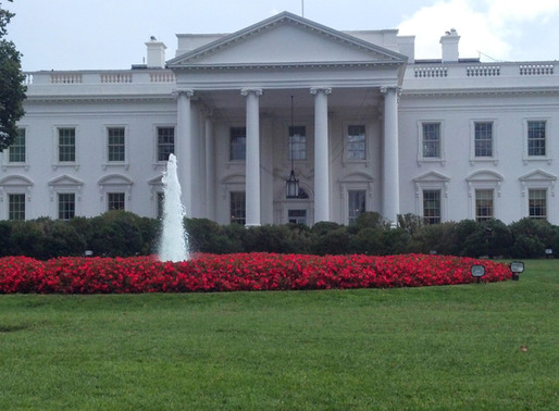 US Residents Consider Leaving the Country Based on Who Occupies the White House Next Year