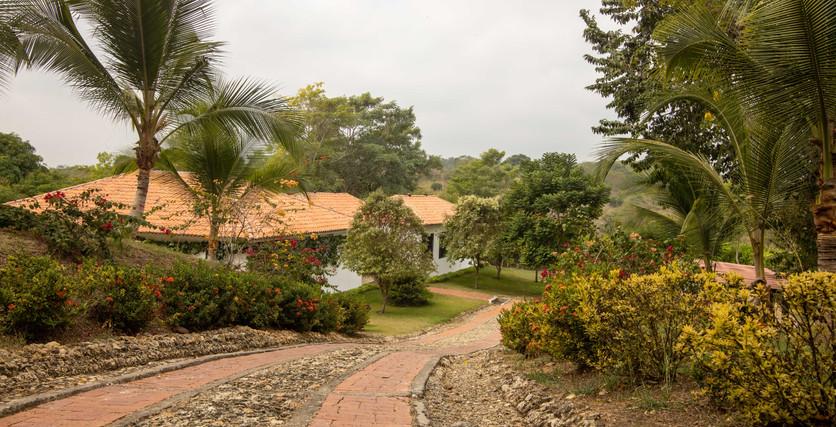 Camino de ladrillos personalizado a la entrada principal de la hacienda