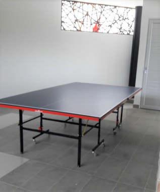 Ping Pong Table