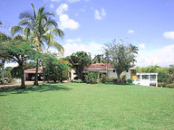 home land and trees cerritos colombia ho