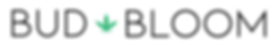 BUD + BLOOM logo