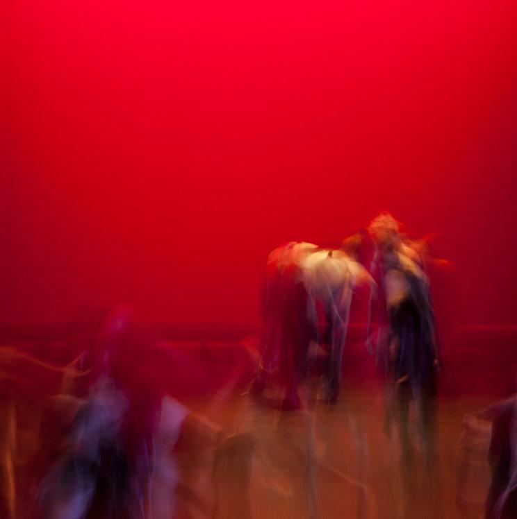Dance Not Dancer 22