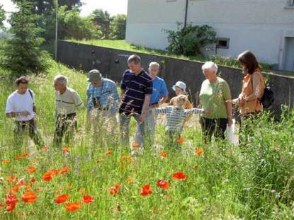 Besuche im Garten 19.5.07 011.jpg