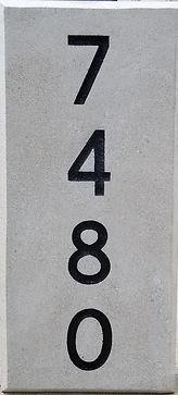 7480.jpg