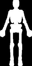 Mensch-Körper.png