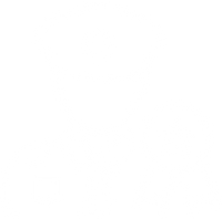PuG-Militär.png