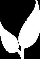 EuN-Pflanzen.png