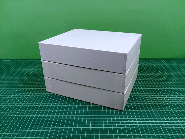 Boxes 24x20x5cm - hard cardboard - PACK: 3