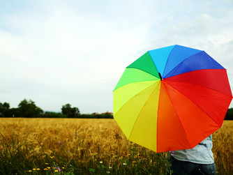 Non-Life Insurance Considerations: Umbrella Insurance