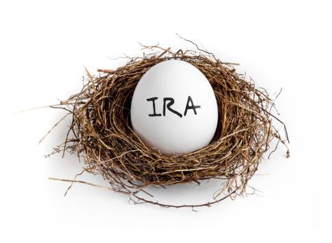 IRA Egg in Nest.jpg